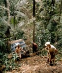 Men tug on winch cables to inch a Land Rover up a steep jungle ridge.